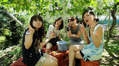 2017青岛葡萄采摘节
